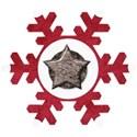 KITD_wintercrush_snowflake