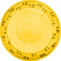 plate yellow (2)