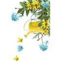 Arlene_Spring Page Cluster