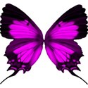 pink butterfly2