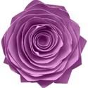 kitc_rockon_flowerpurple