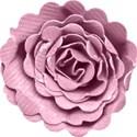 kitc_mexico_flowerpurple