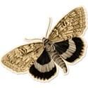 pamperedprincess_tresjolie_butterfly1 copy