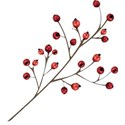 cwJOY-TraditionalChristmas-berries1