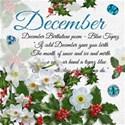 chey0kota_12 December_Birthday