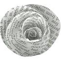 aw_winterblues_newspaper flower 1