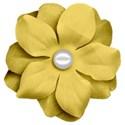 SCD_AppleofmyEye_flower2