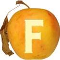 JAM-FallFestival-Alpha-F