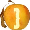 JAM-FallFestival-Alpha-symbol7