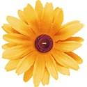 JAM-FallFestival-flower1