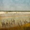 DS_BeachArt_Paper1B